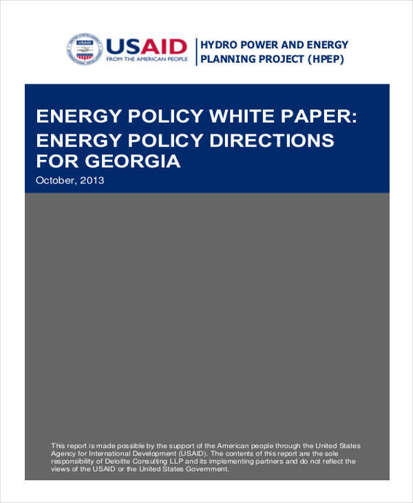energy policy white paper1