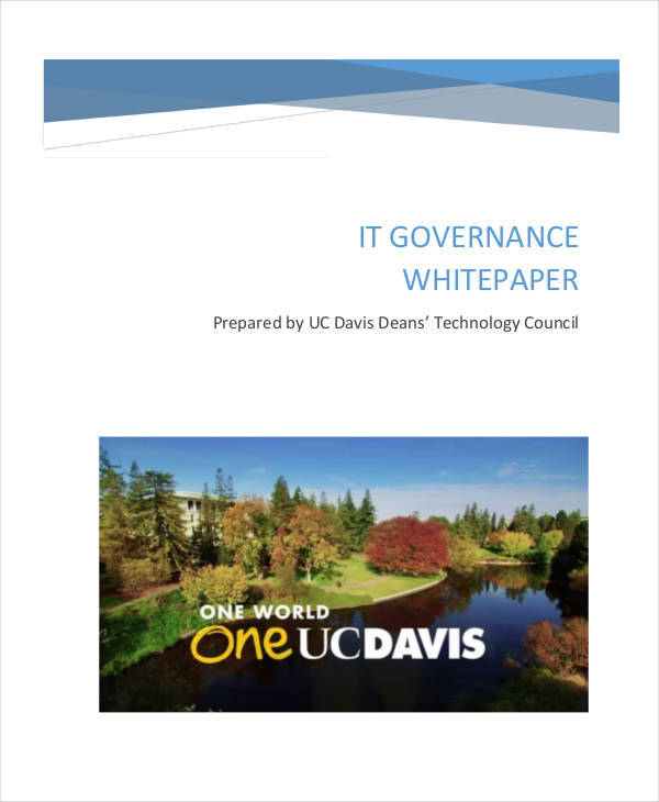 it governance white paper1