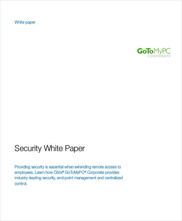 it security white paper2