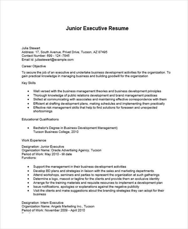 free 34  executive resume templates in pdf