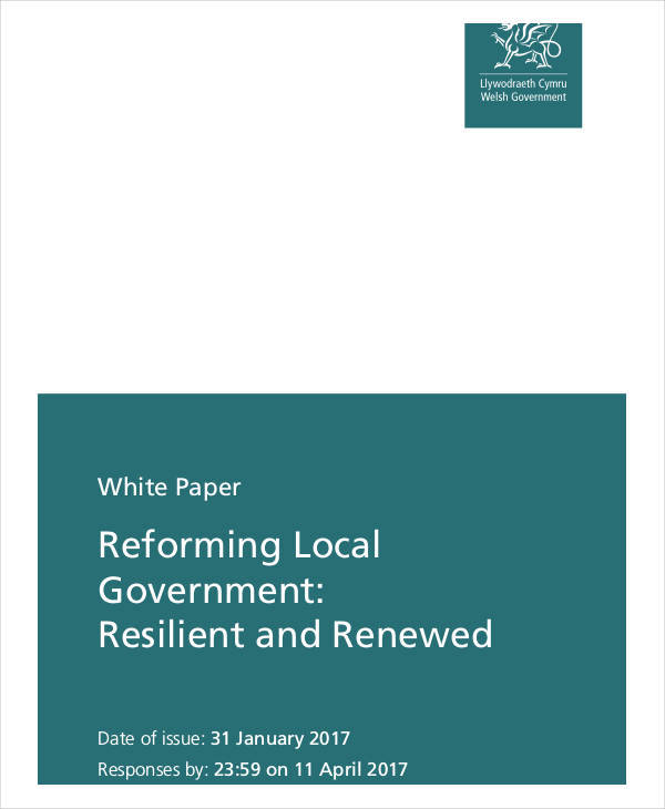 Thesis service delivery local government
