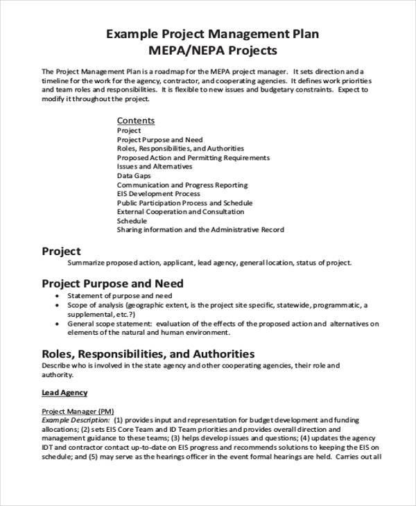 project management work