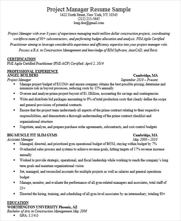 project manager position