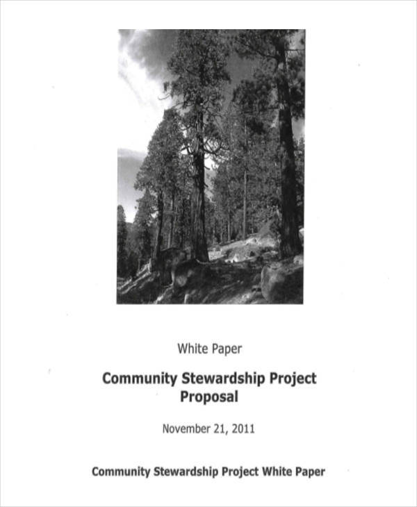 project proposal white paper