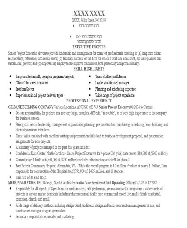 senior executive project resume