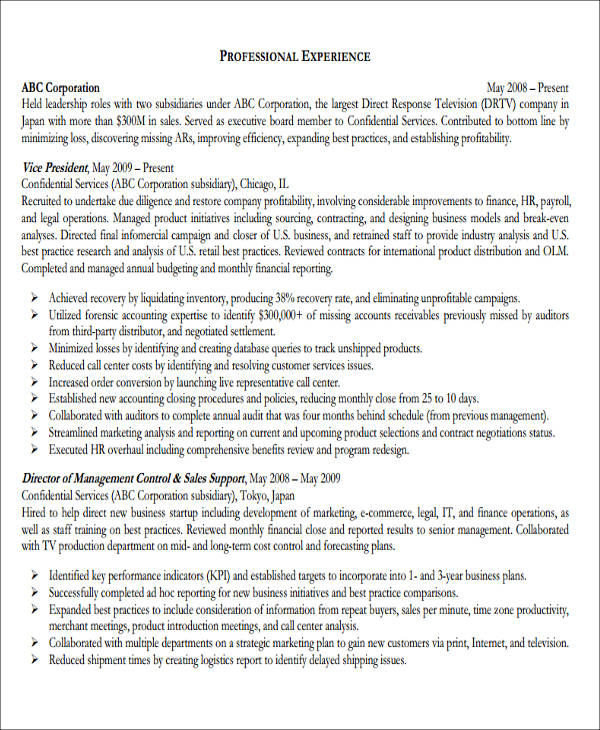 28  accountant resume format