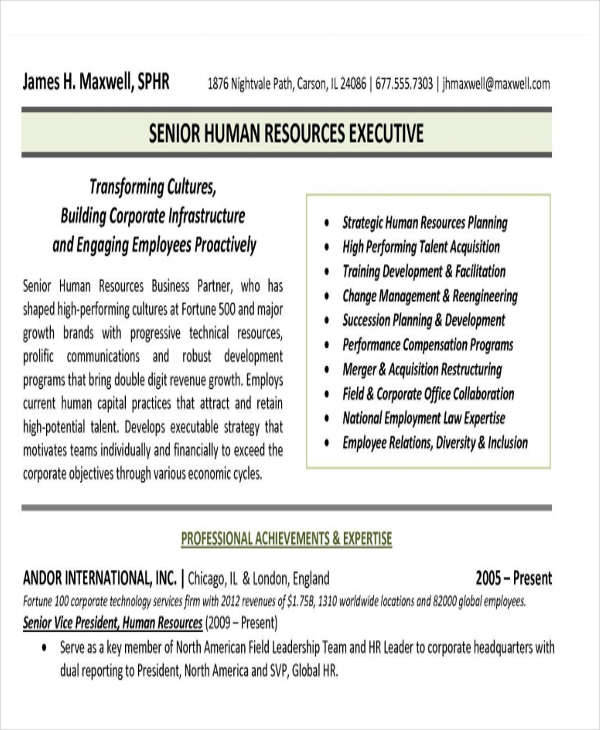 25+ Executive Resumes in PDF | Sample Templates