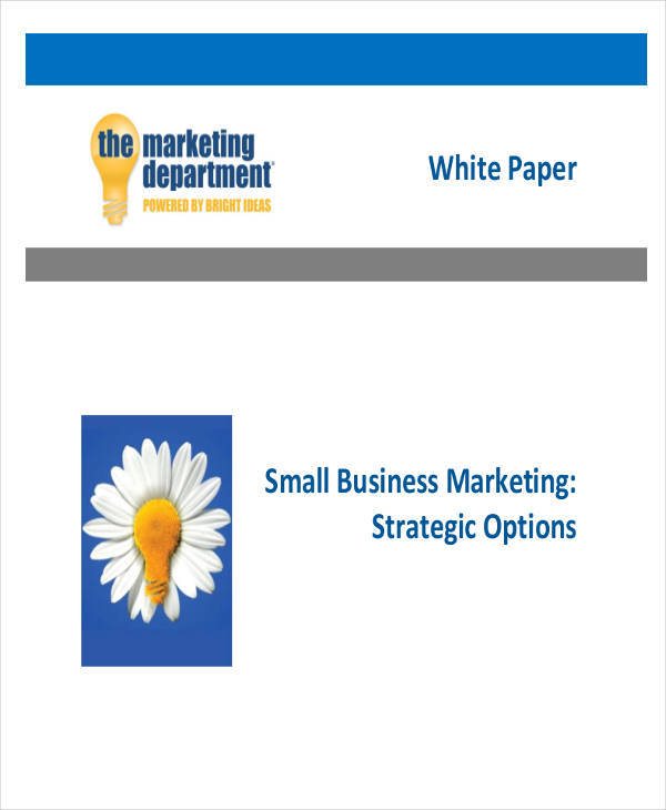 small business white paper3