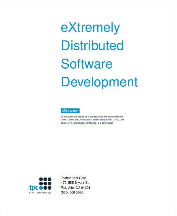 software development white paper