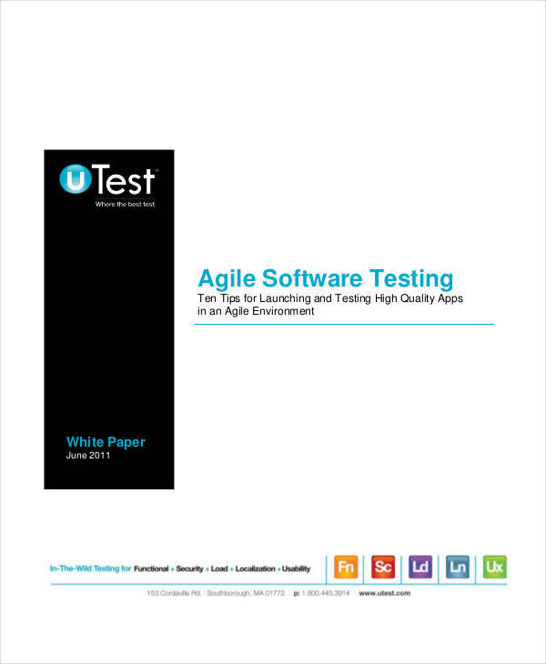 software testing white paper1