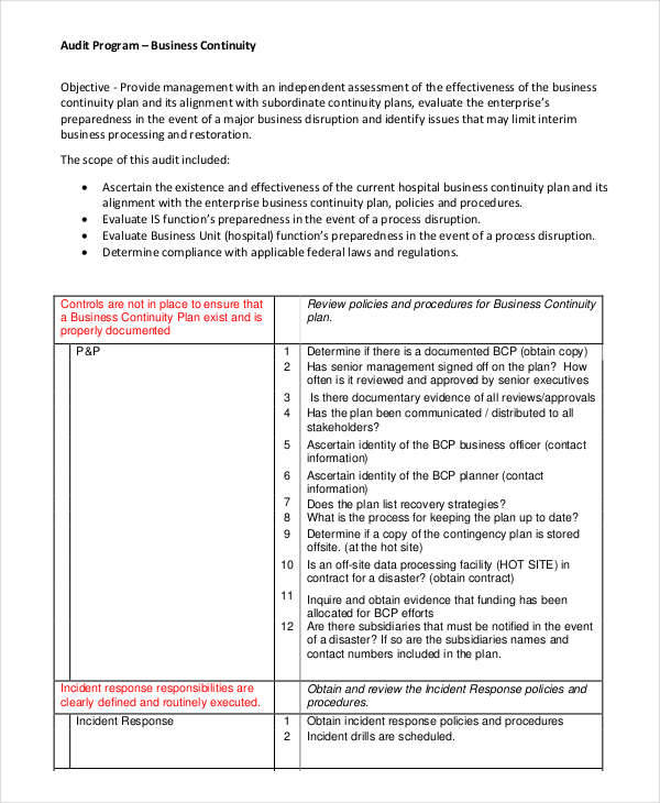 free 6 audit program samples  u0026 templates in pdf