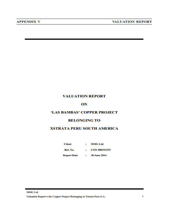 business valuation project report in pdf
