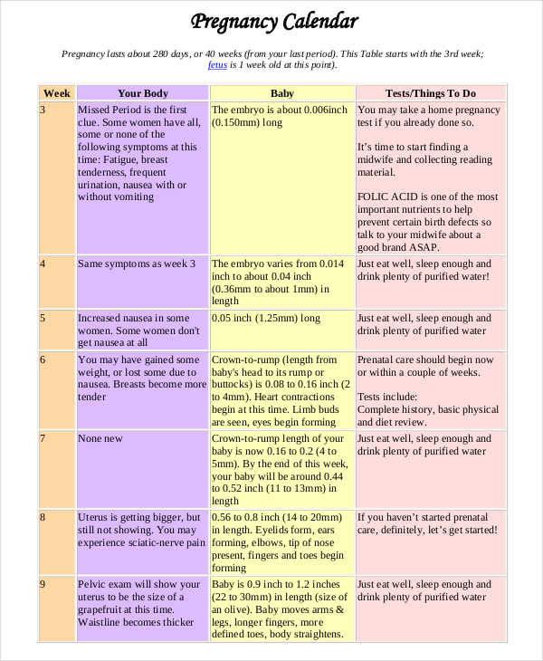 daily pregnancy calendar3