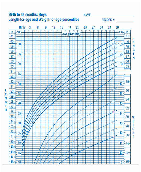 It is a photo of Massif Printable Growth Chart