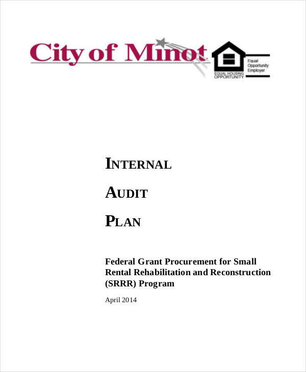 Audit Plan Templates  Examples In Word Pdf