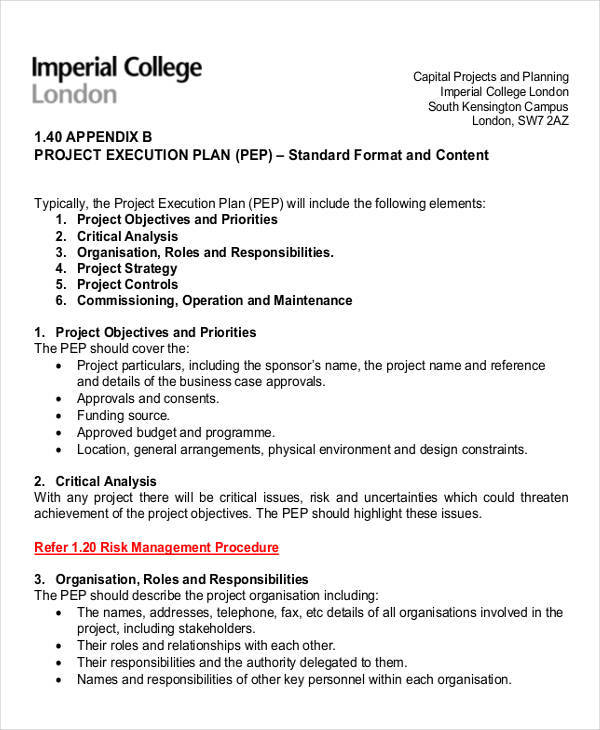 project execution plan3