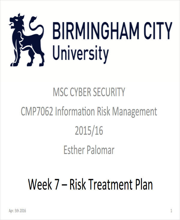 risk treatment plan2