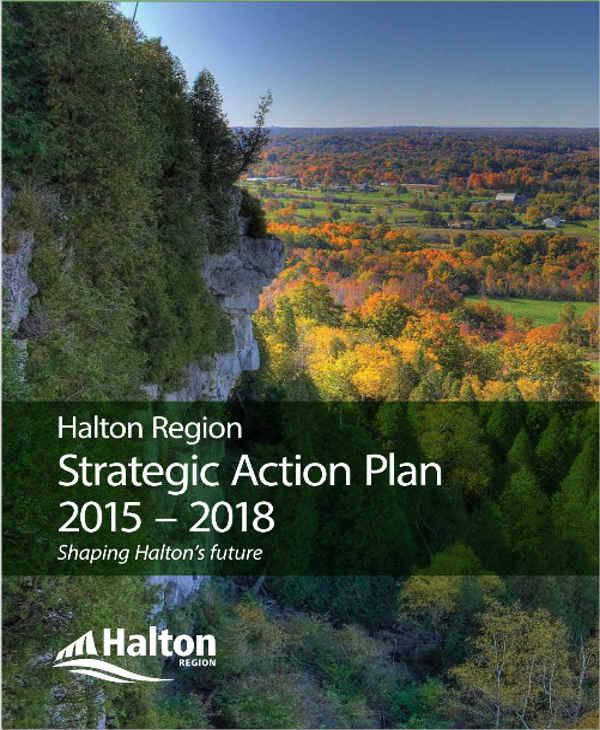 strategic action plan2