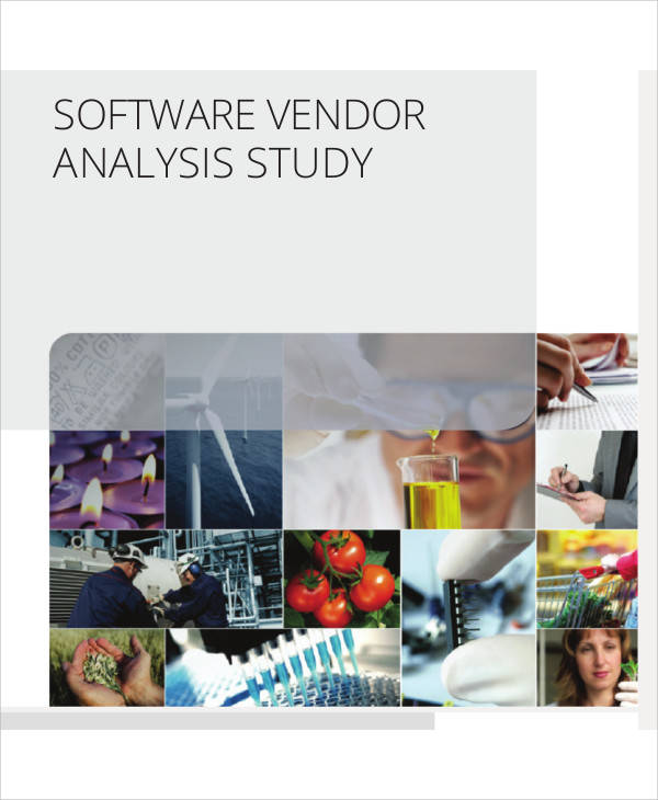 analysis of software vendor
