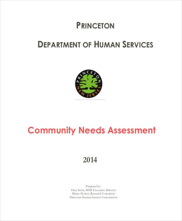 community needs sample assessment