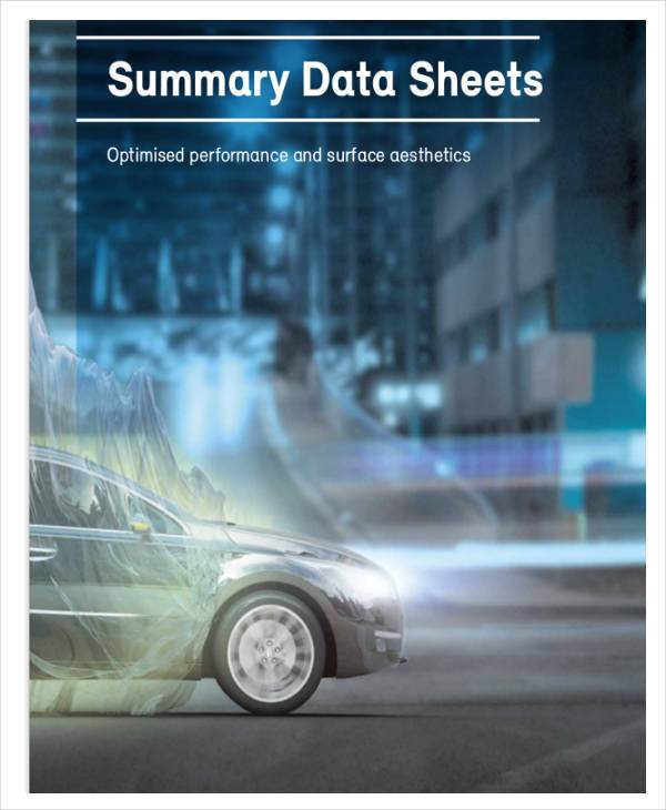 data summary sheet example