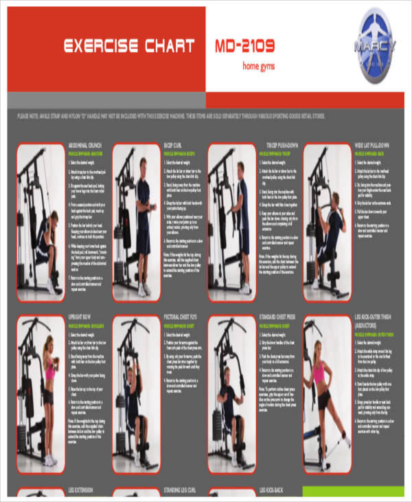 gym exercise chart1