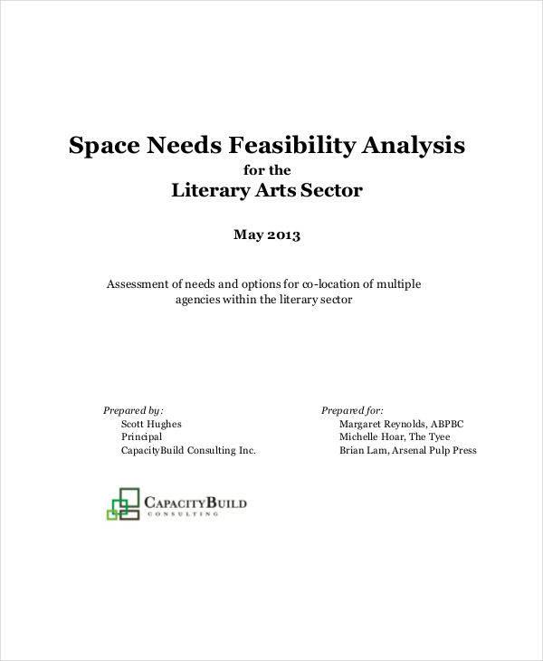 needs feasibility analysis