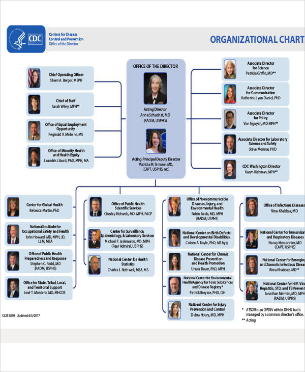 office organizational chart examples