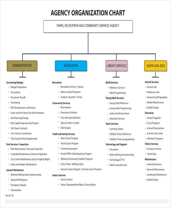 organizational chart for agency