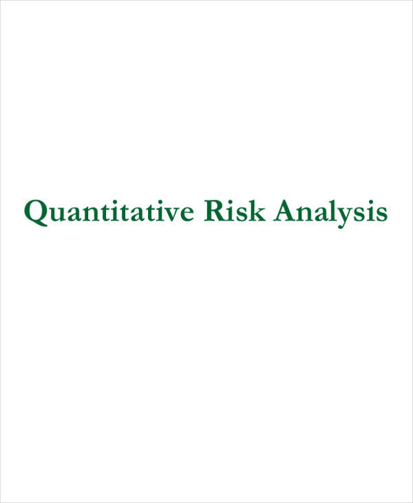 Quantitative Risk Analysis Samples  Free Sample Example