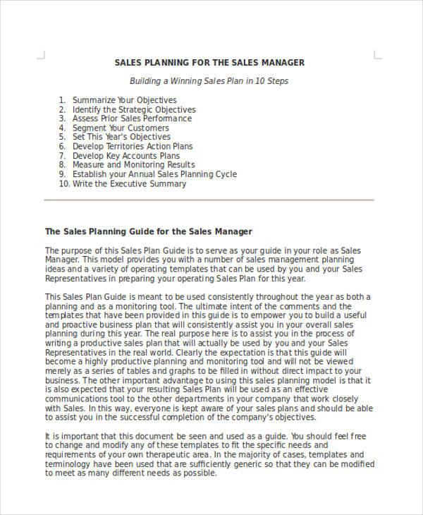 sales manager action plan