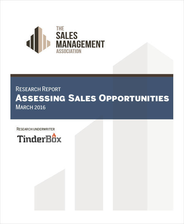 sales opportunity assessment