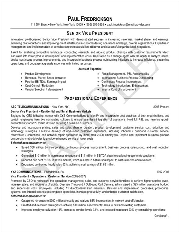senior vice president resume sample1