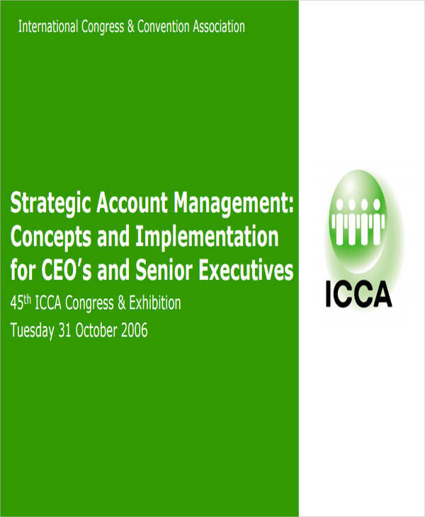 strategic account plan