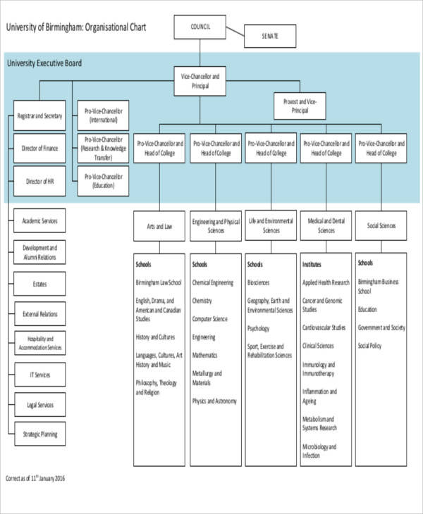 9 organizational chart templates � free sample example