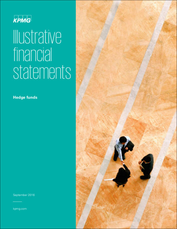 illustrative financial statement sample