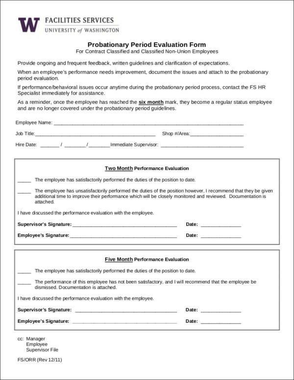probationary employee performance evaluation form template