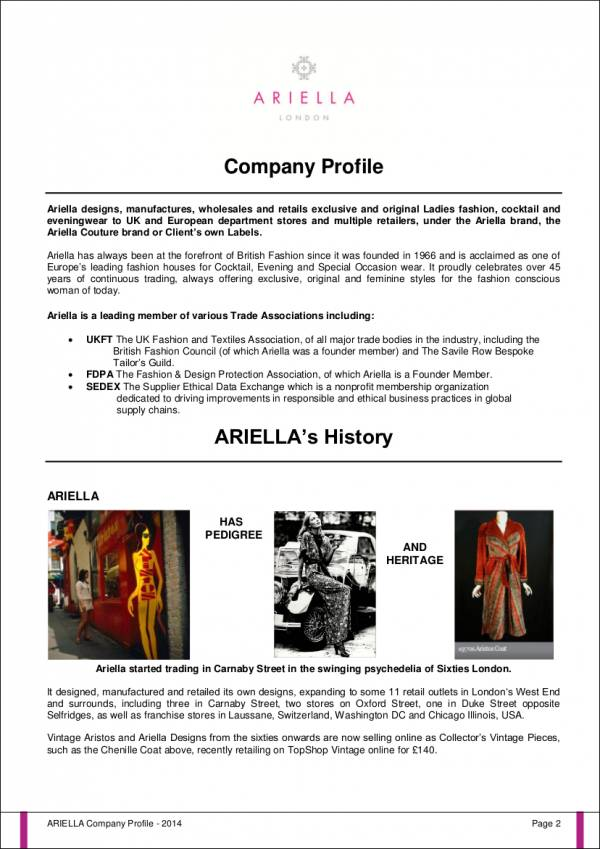 Free 30 Company Profile Samples Templates In Pdf