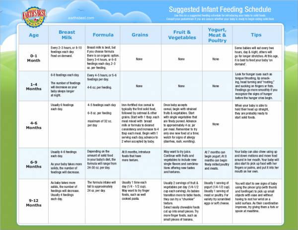 suggested infant feeding schedule