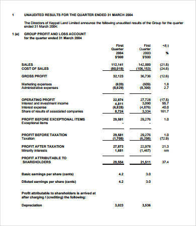 annual pro forma income statement