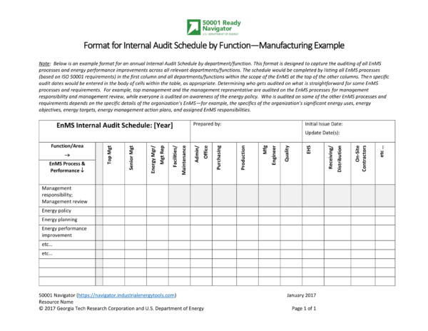 format for internal audit schedule by function