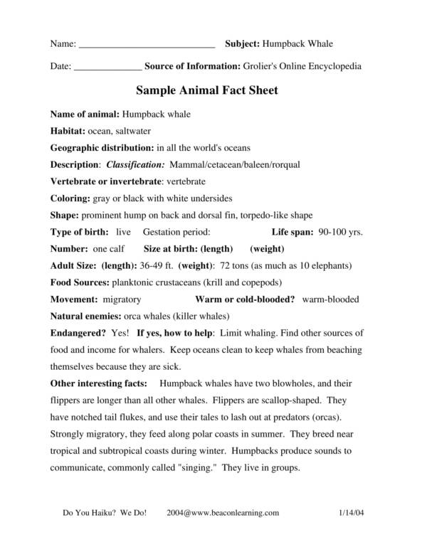 one page animal fact sheet sample
