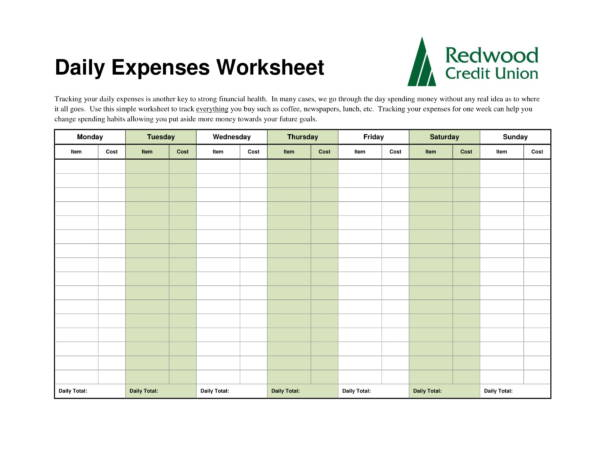 daily expenses worksheet