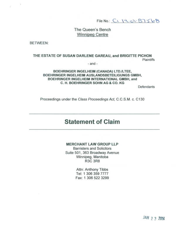 detailed statement of claim sample 01