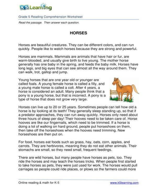 5th grade reading comprehension worksheet