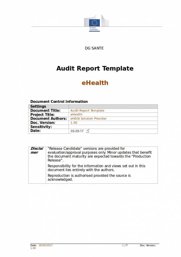 10 tax audit report samples templates pdf word for Sample hr audit report template