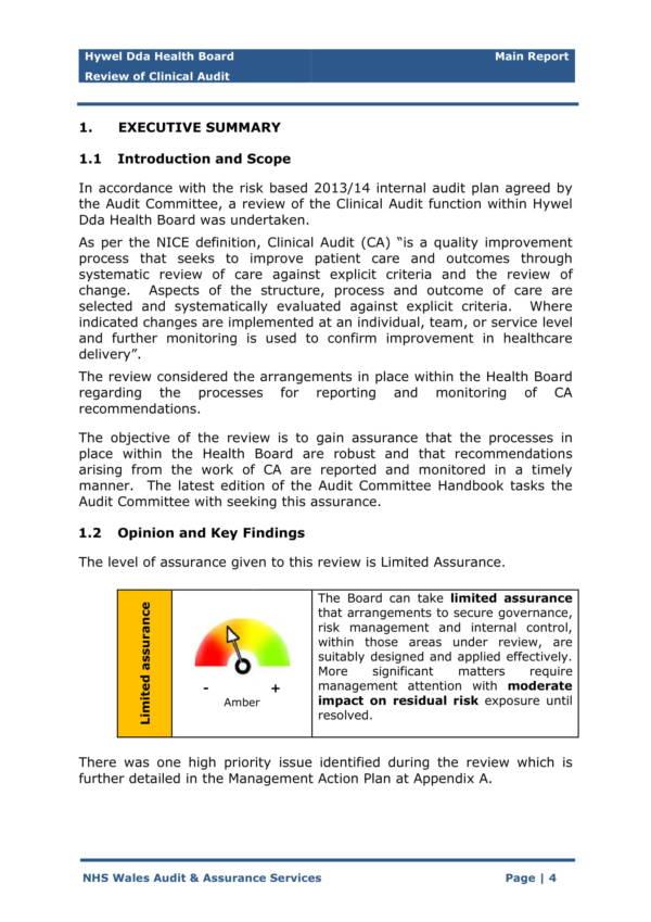 final internal clinical audit report 04
