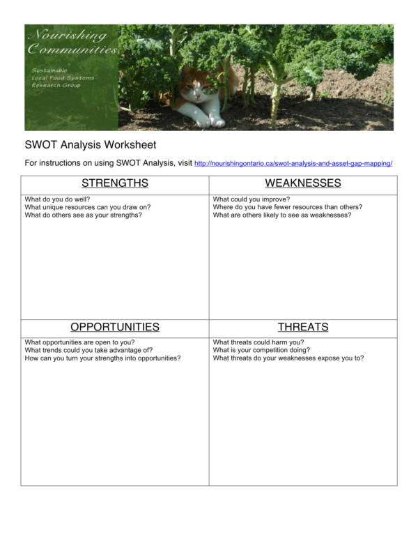 health care swot analysis template with instructions 1