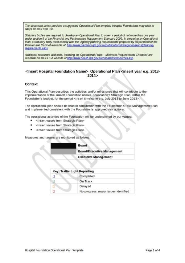 hospital foundation operational plan template