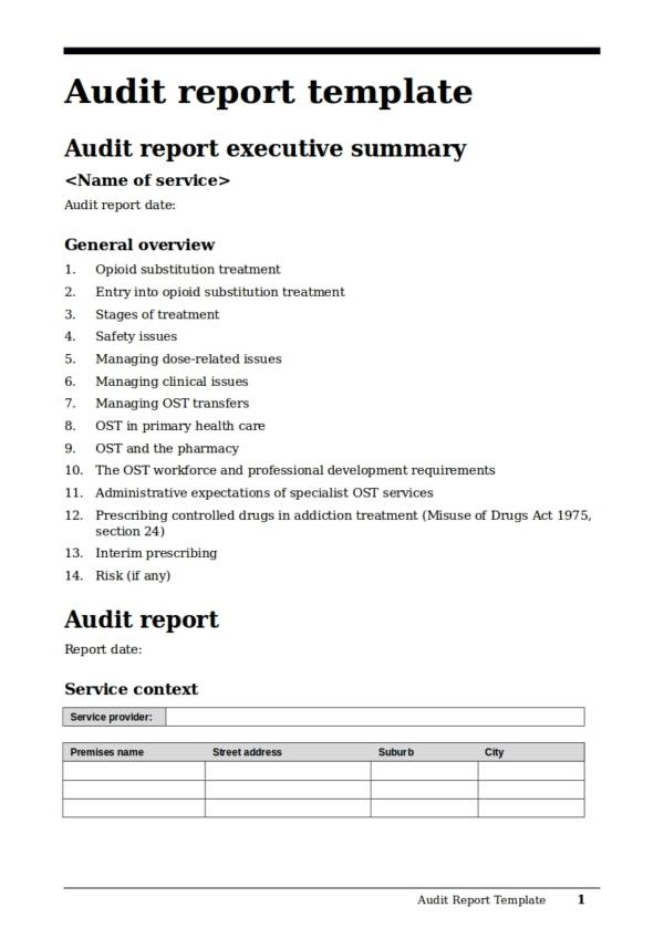 ministry of health audit report template